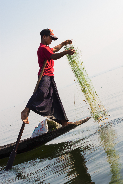 Pêcheur du Lac Inle, Birmanie Myanmar