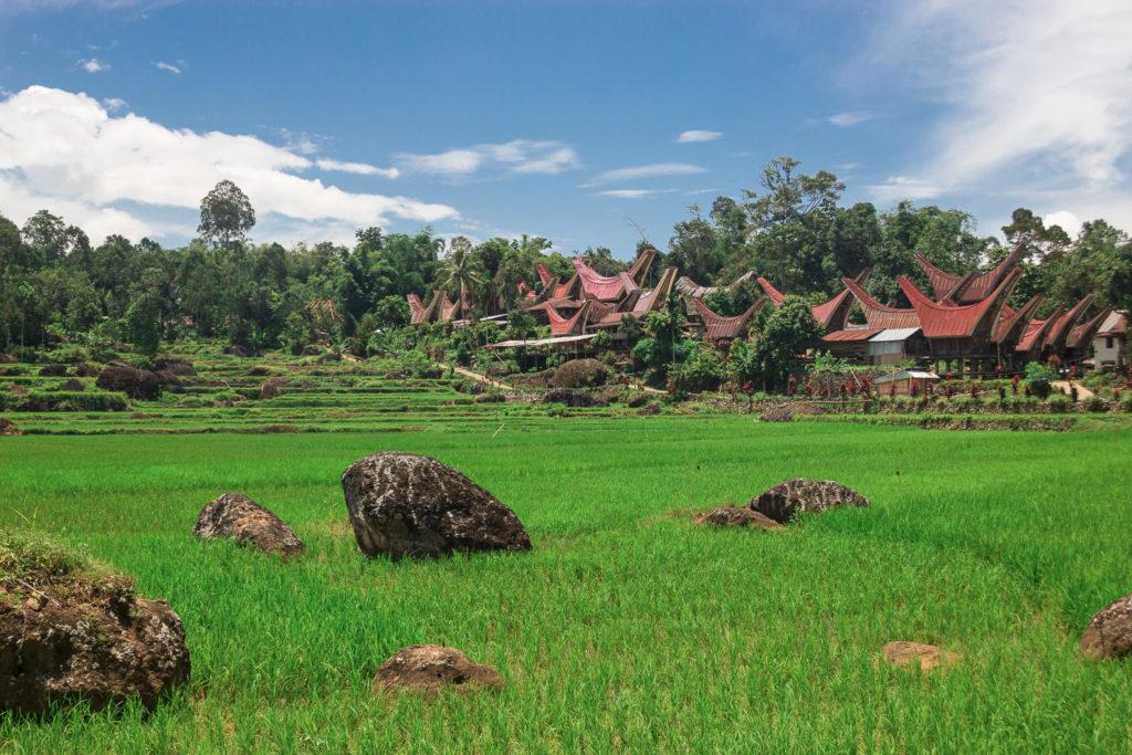 Village du pays Yoraja, Sulawesi, Indonésie