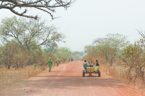 Piste entre Nazinga et Bobo Dioulasso, Burkina Faso