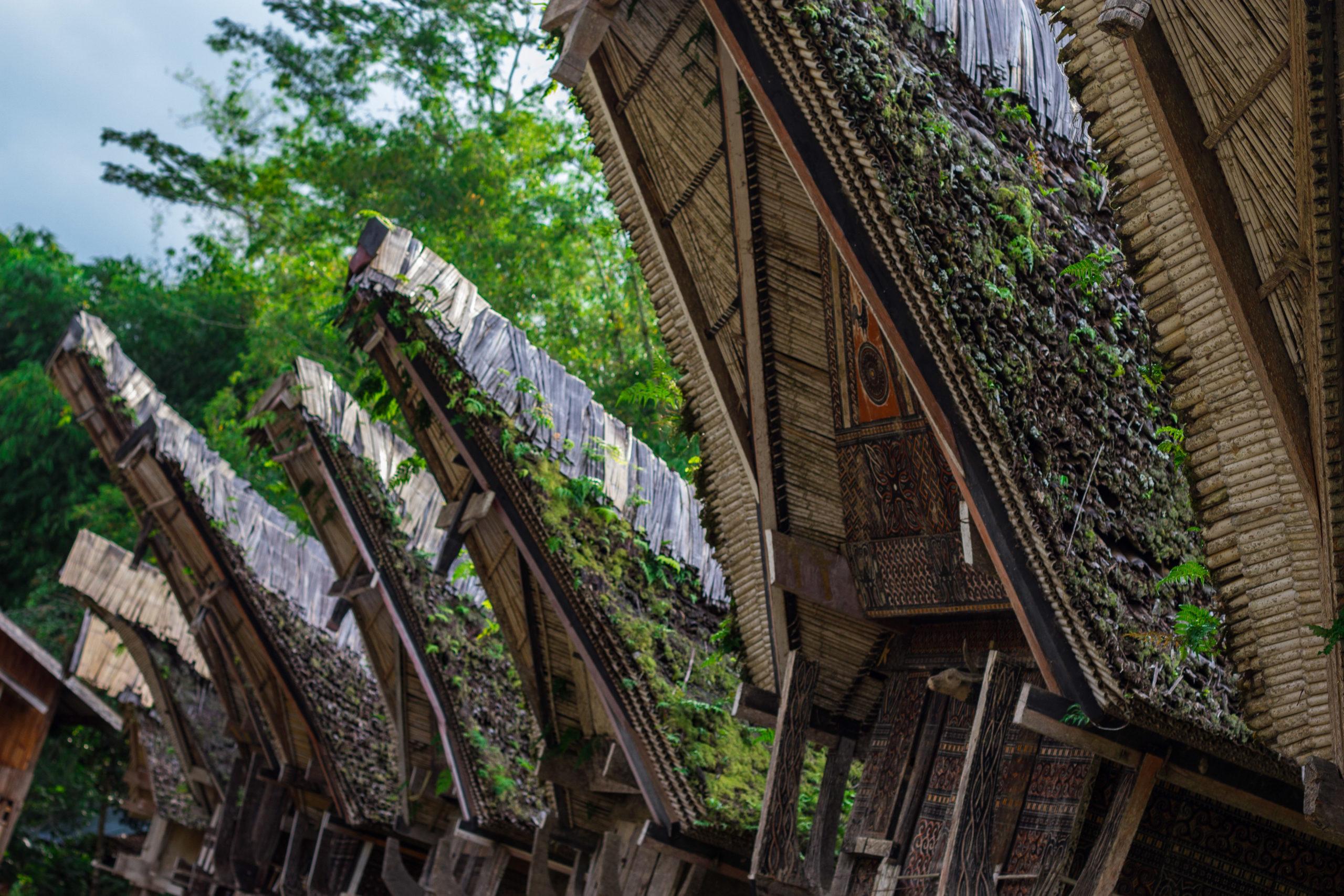Maisons Toraja à Sulawesi, Indonésie