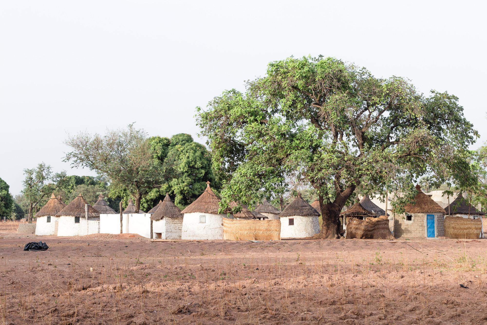 Village de cases de Tengrela, région de Banfora, Burkina Faso