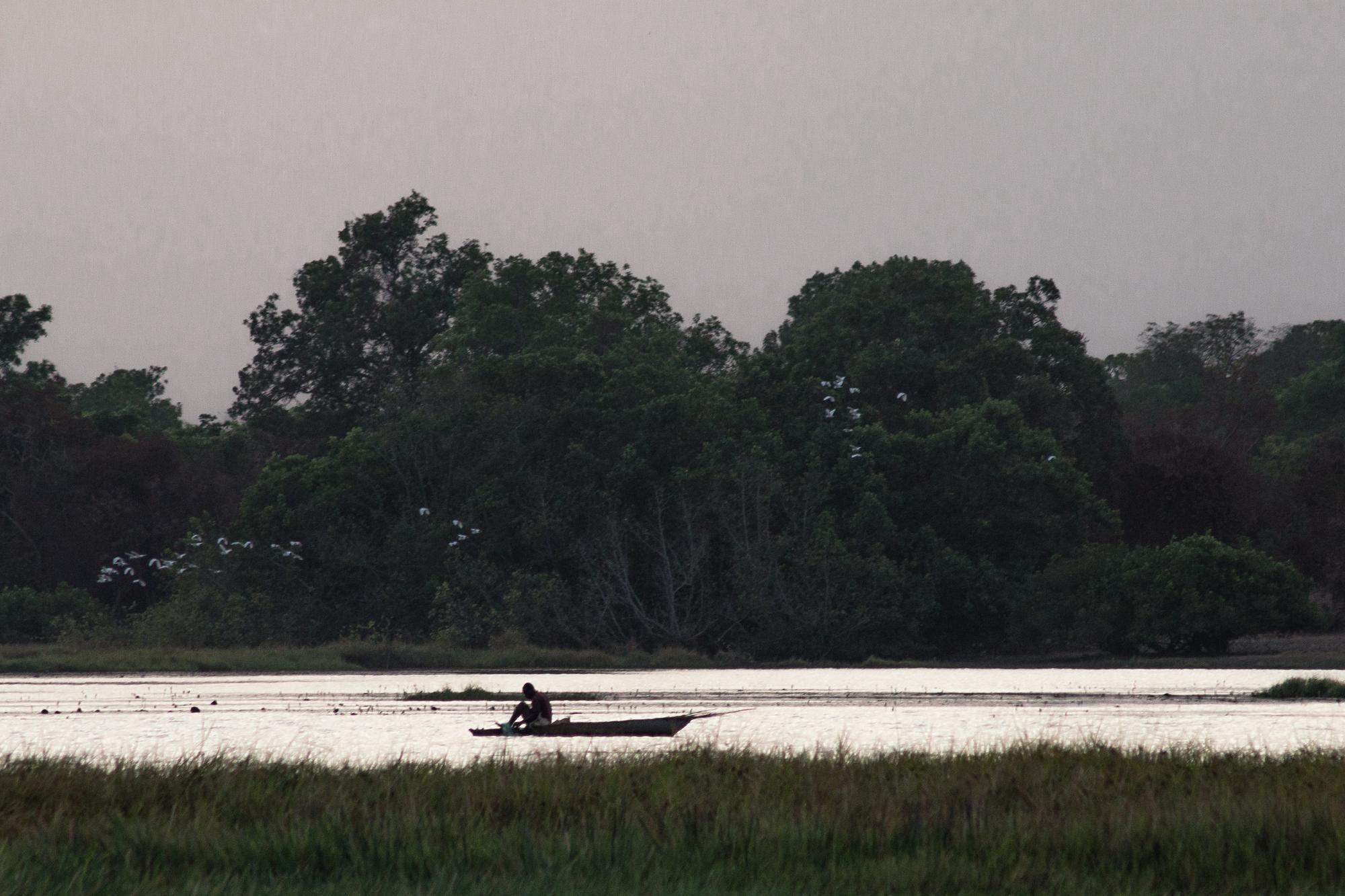 Pêcheur en pirogue sur le lac de Tengrela, région de Banfora, Burkina Faso
