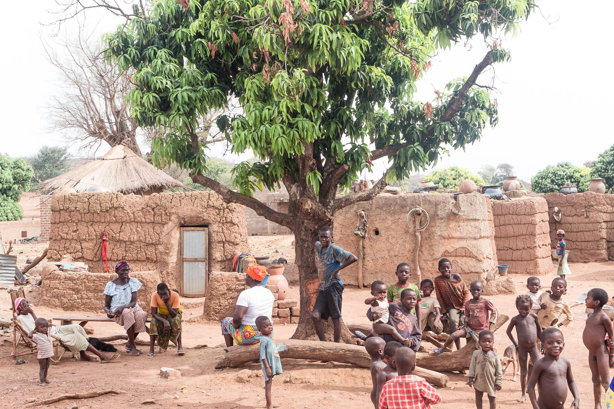 Plein d'enfants au pied du manguier dans le village Lobi de Sansana, Burkina Faso