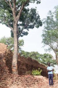 Pensif sur les ruines de Loropeni, Burkina Faso