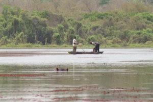 Pêcheurs en pirogue et hippopotame sortant la tête de l'eau sur le lac de Bala, Burkina Faso