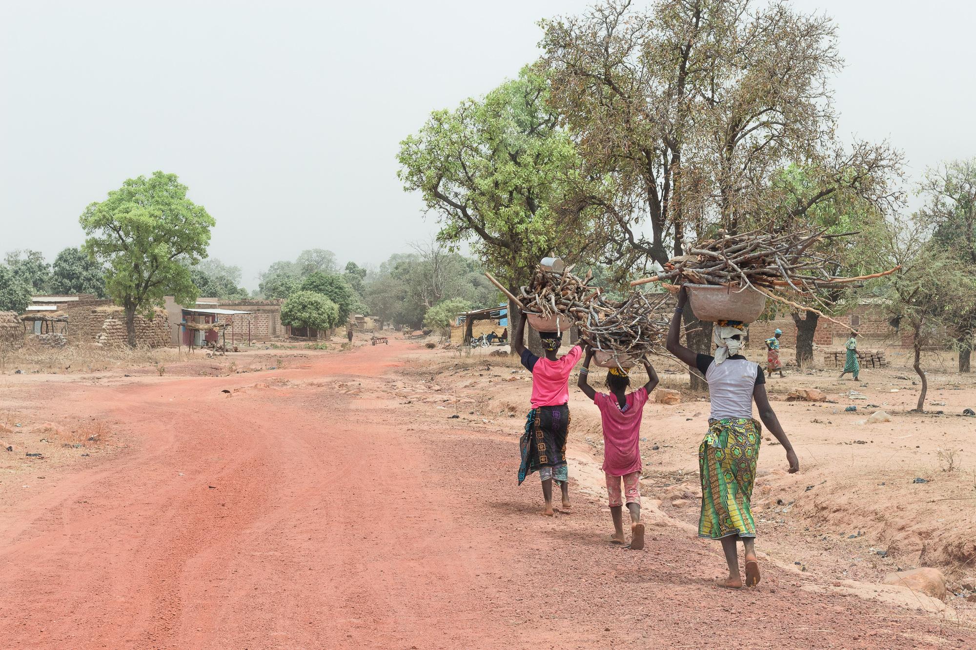 Femmes portant du bois sur leurs têtes sur la route de la mare de Bala, Burkina Faso