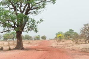 Piste rouge menant à la mare de Bala, Burkina Faso