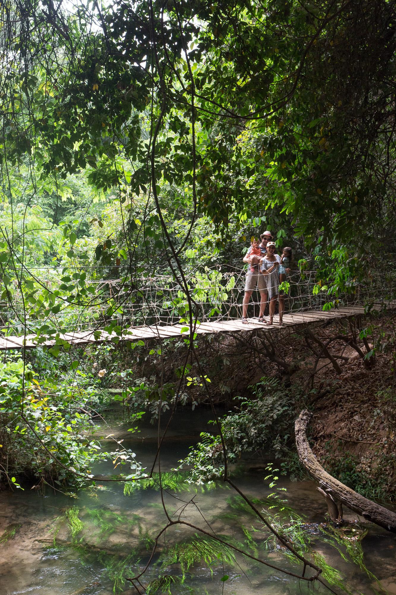 Pont suspendu dans la forêt de Kou, Burkina Faso