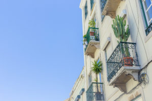 Balcons en fer forgé et cactus, Lisbonne, Portugal