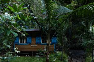Case dans la végétation tropicale