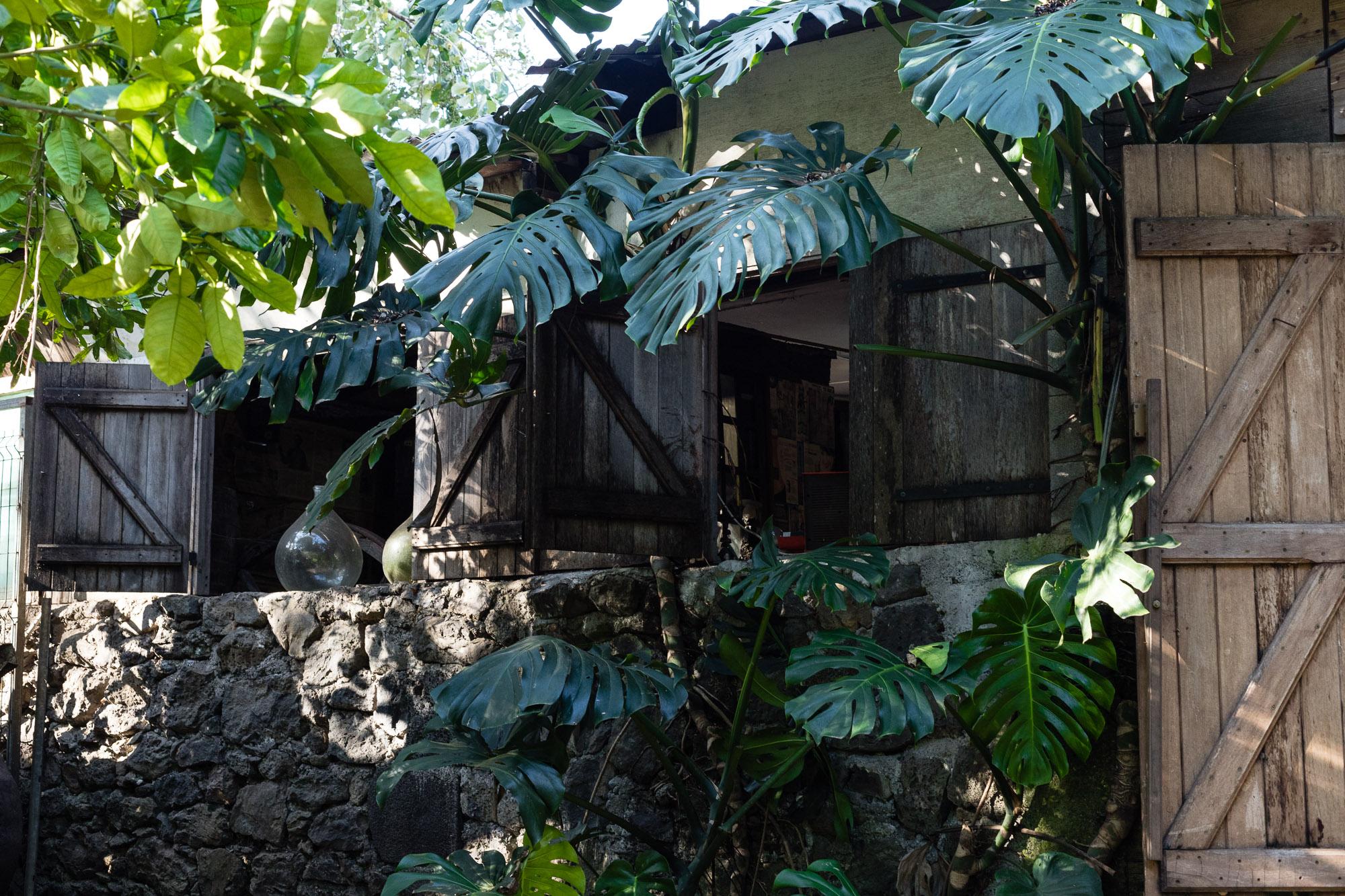 Case créole sous la végétation, village des Engagés malgaches, Vieux Domaine, Réunion