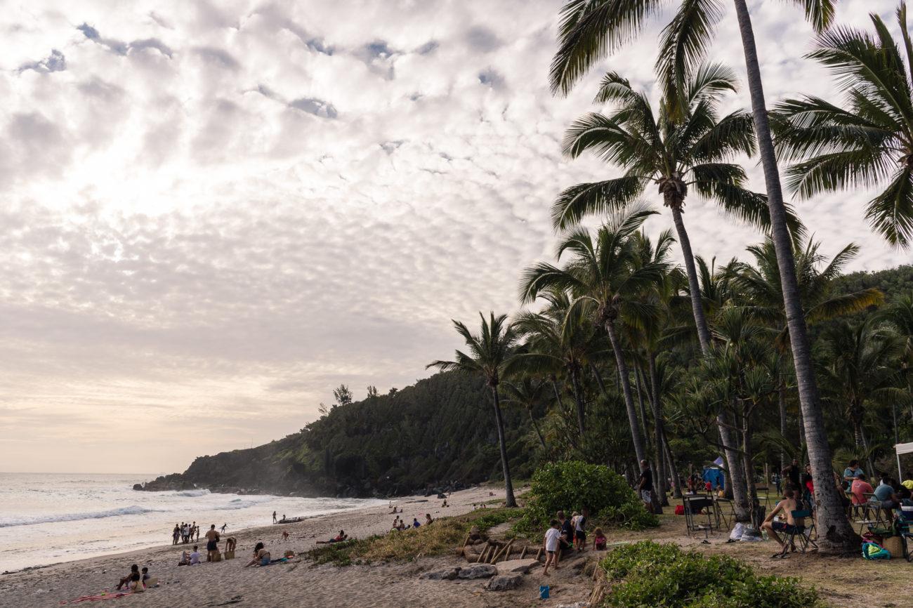 plage grande anse palmiers