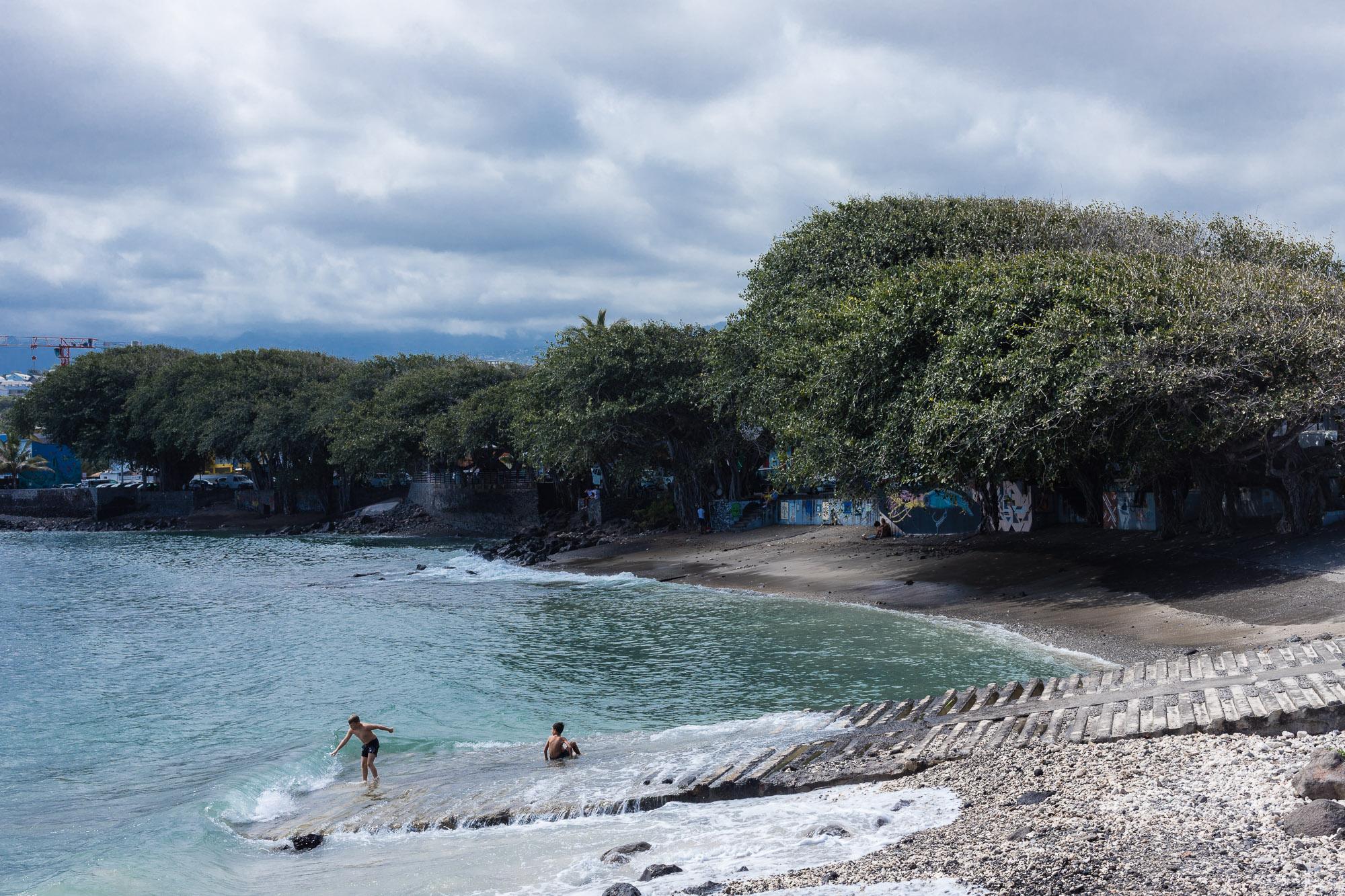 plage de Terre Sainte et banians, saint pierre, la réunion