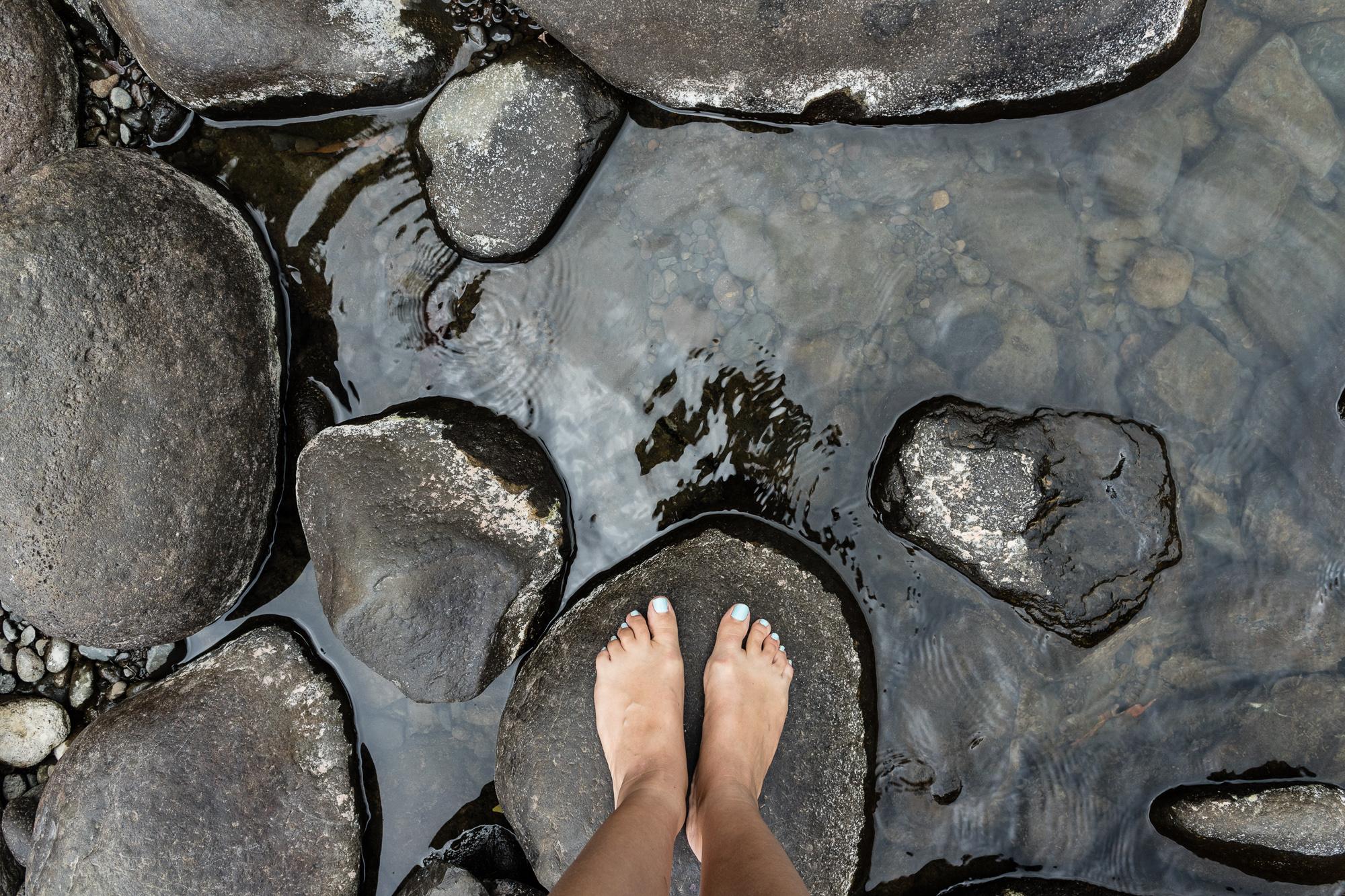 rochers bassin la mer la reunion