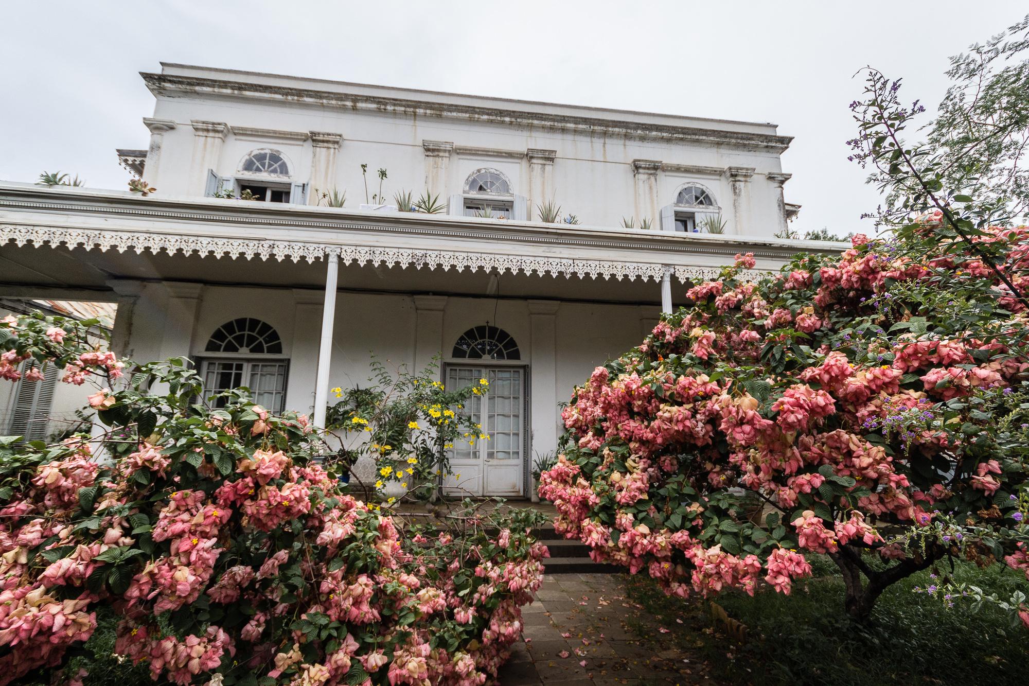 maison repiquet fleurs