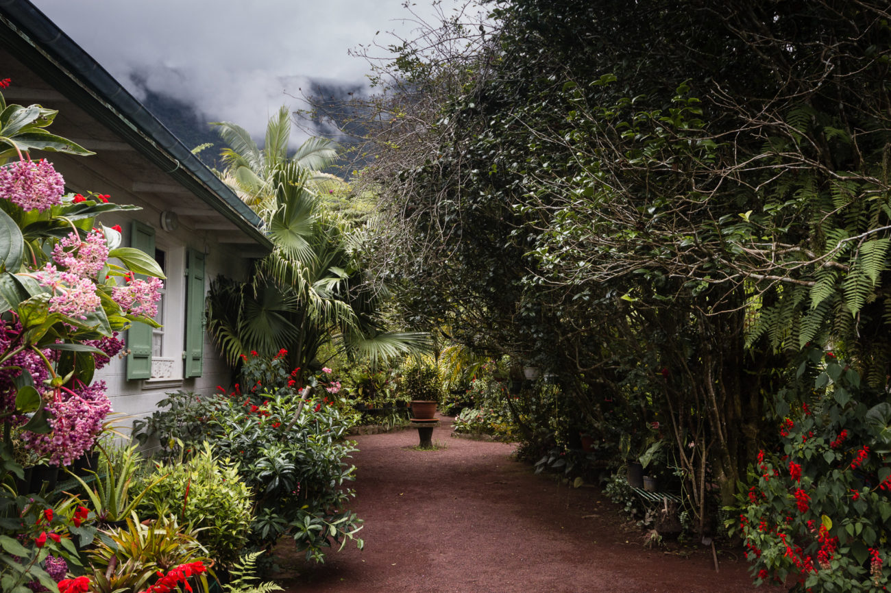 maison folio jardin