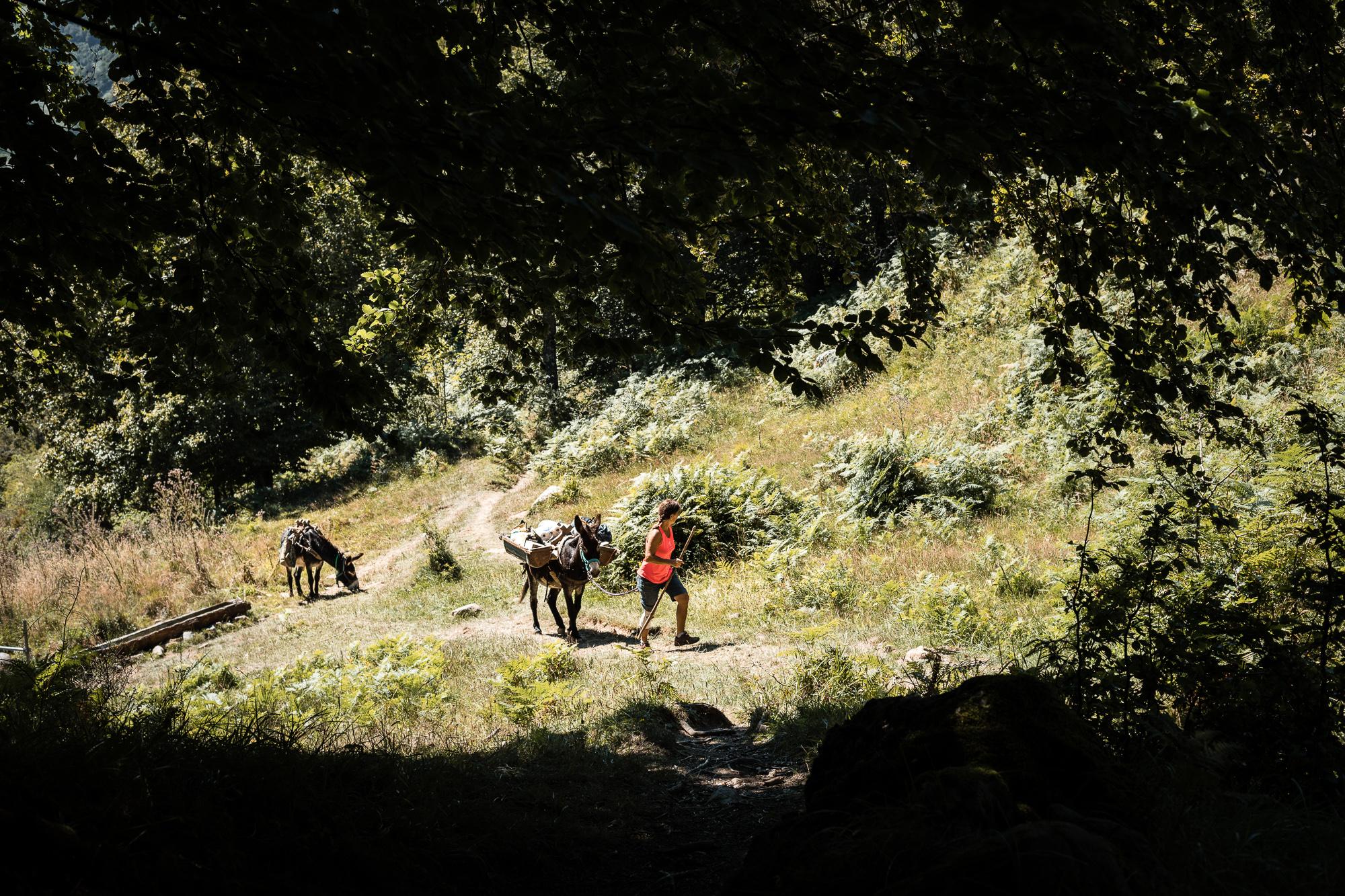 rando ânes chemin mature